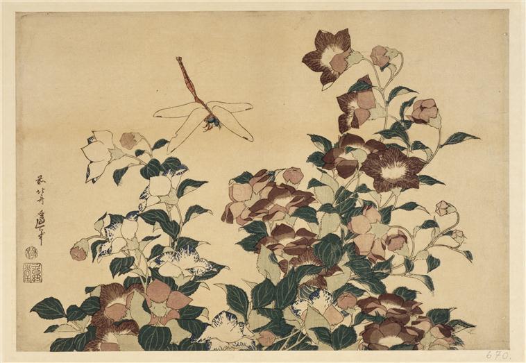 Pour moi, un brin d'herbe a plus d'importance qu'un grand arbre, un petit caillou qu'une montagne, une petite libellule a autant d'importance qu'un aigle. Dans la civilisation occidentale, il faut du volume. C'est l'énorme montagne qui a tous les privilèges.  – Joan Miró