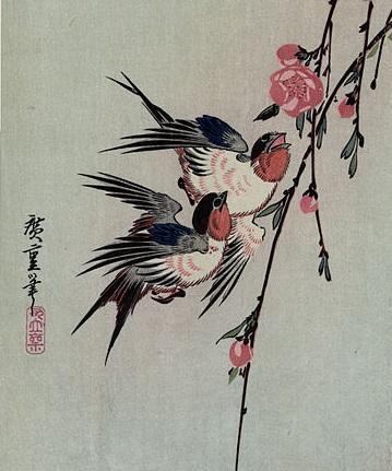 La pluie de printemps, goutte à goutte sur les ailes des hirondelles, et si j'en faisais la caresse à mes cheveux du matin? Tanka de Yosano Akiko