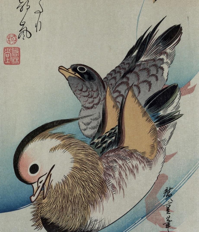 Les canards eux-mêmes, qui font le tour de la berge de l'étang de Karu, dessus les algues jolies, point ne dorment solitaires. Un tanka de la Princesse de Ki