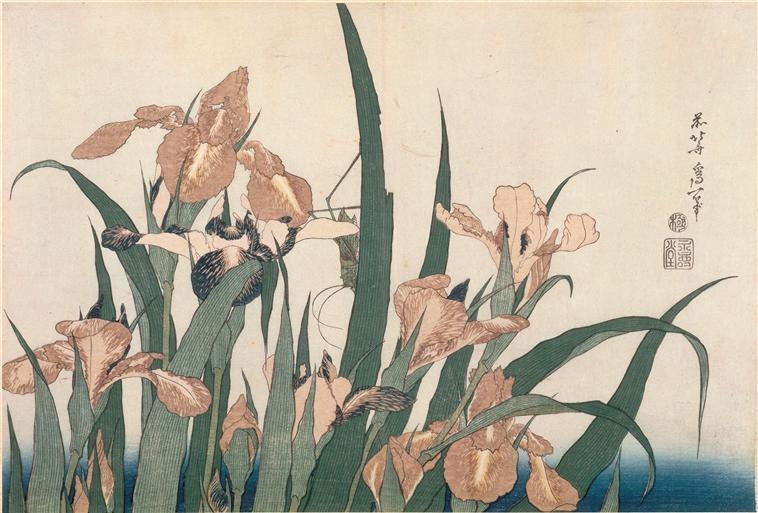 Comme il ressemble à son ombre sur l'eau, l'iris. Matsuo Bashô